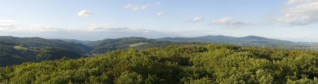 Sommerlicher Blick vom Meisterturm nach Norden