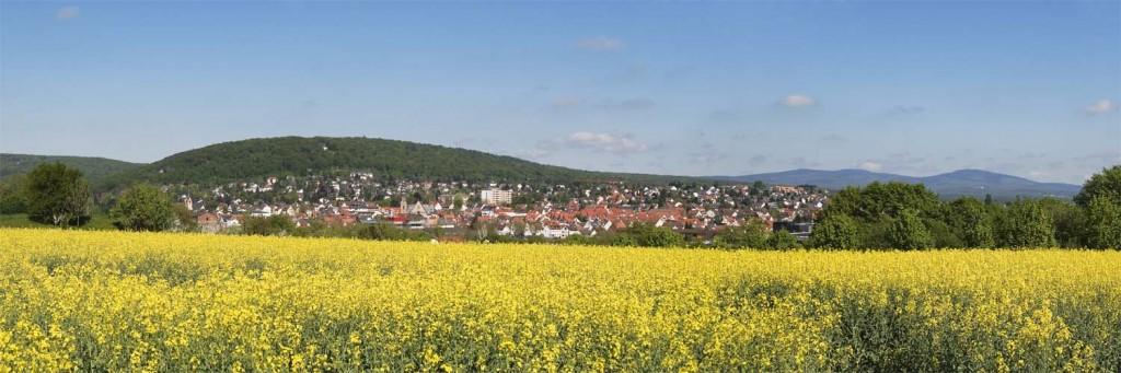 Panorama Hofheim aus Richtung Landratsamt